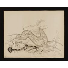 ELABORATE CALLIGRAPHY DRAWING FEATURING DIANA, GODDESS OF THE HUNT, RIDING A STAG, SIGNED AND DATED 1888